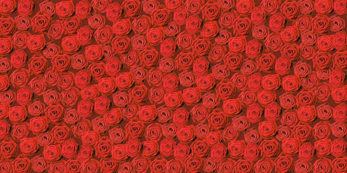 rode_rozen_Keukenprint_volledig