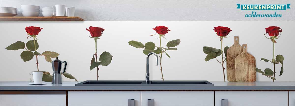rode_rozen_op_steel_Keukenprint